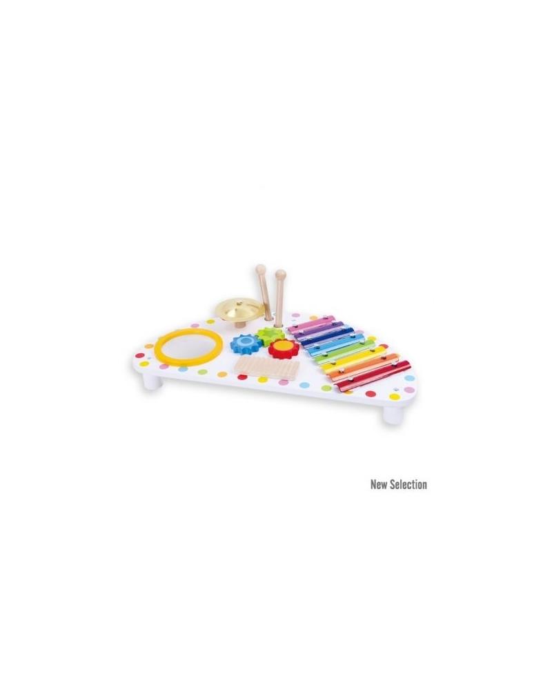 Multifunkcinis muzikinis žaislas 2+
